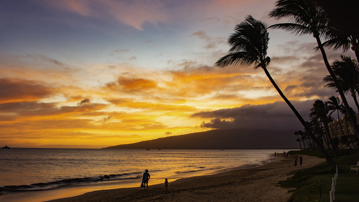 Maui Real Estate Blog | Upcountry, Kapalua, Wailea News