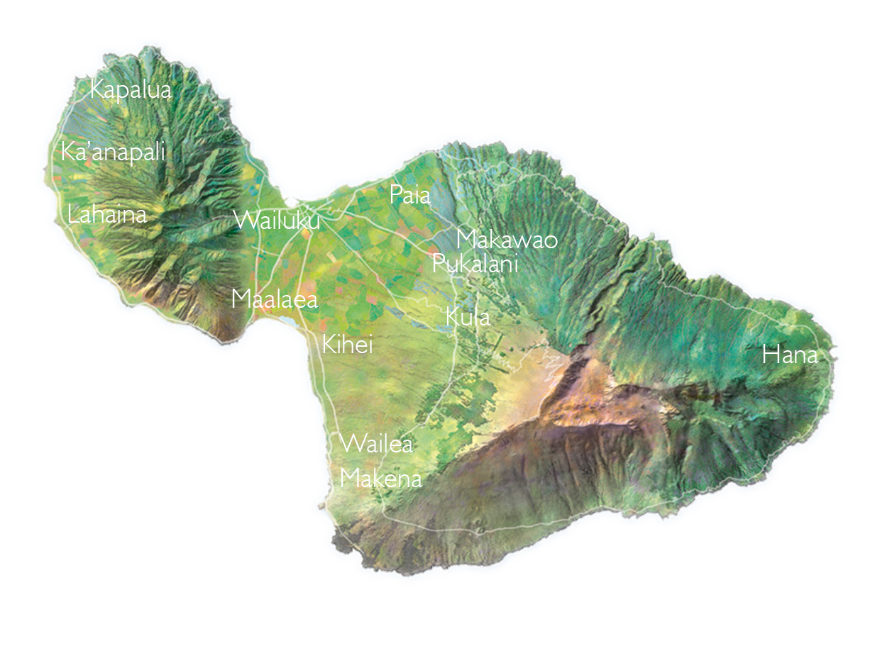 Maui Real Estate Map